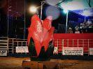 1º Rodeio Show Poseidon Eventos Clube da Viola - Galeria 2-26
