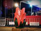 1º Rodeio Show Poseidon Eventos Clube da Viola - Galeria 2-27